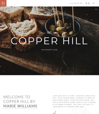 YT Copper Hill